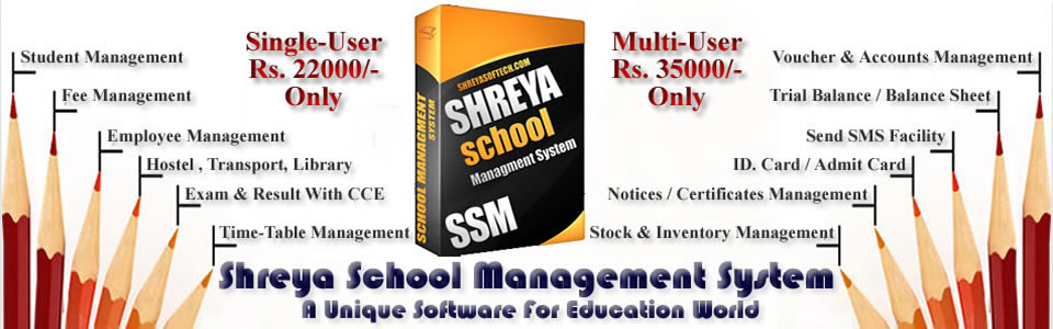 School Software Developer
